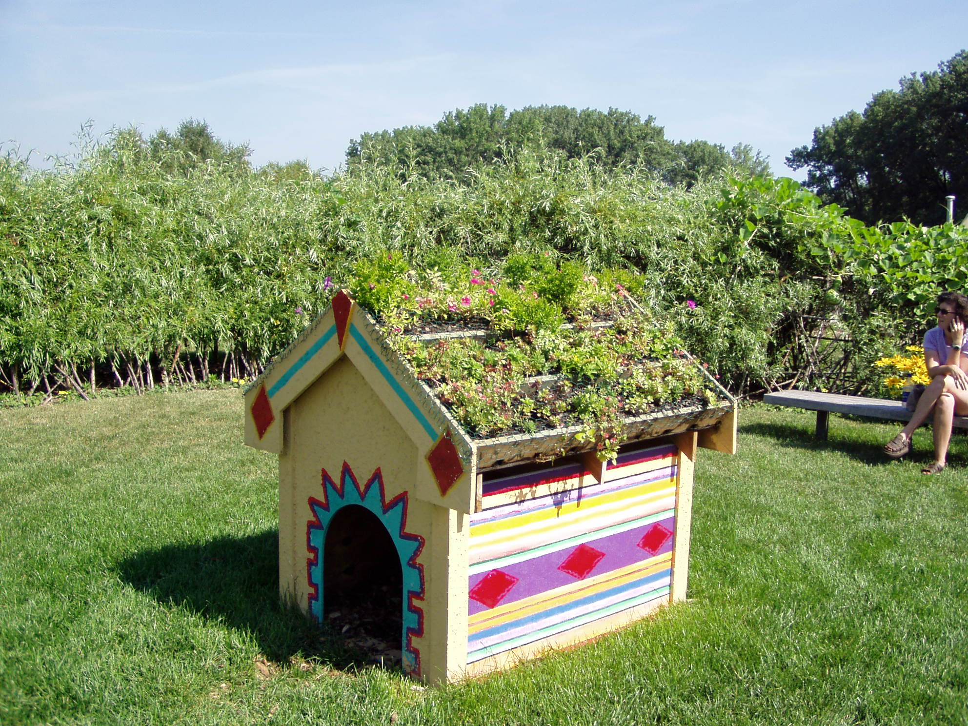 Green Roof Garden Dog House